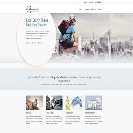 Synthesis Web Solutions - Company Website Design